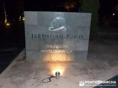 Enología en Rioja - Senderismo Camino de Santiago - Jardin de Baco; senderismo mallorca rutas